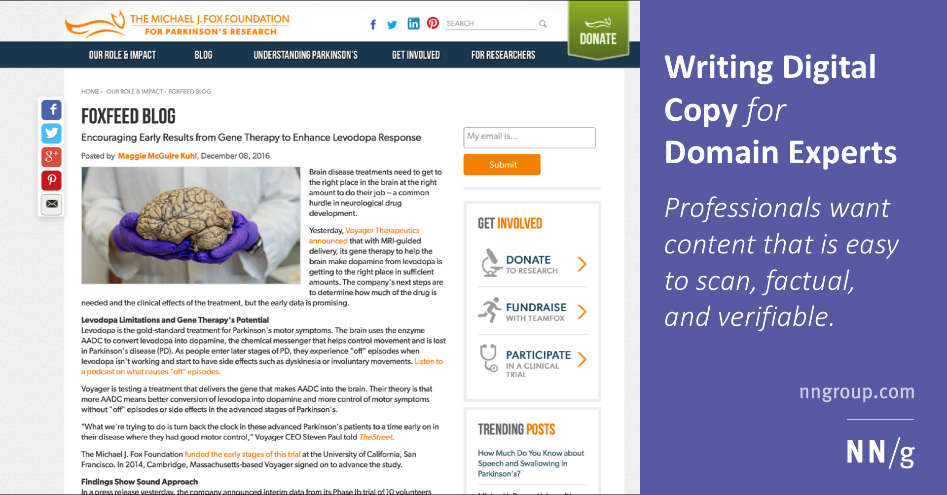 Writing Digital Copy for Domain Experts