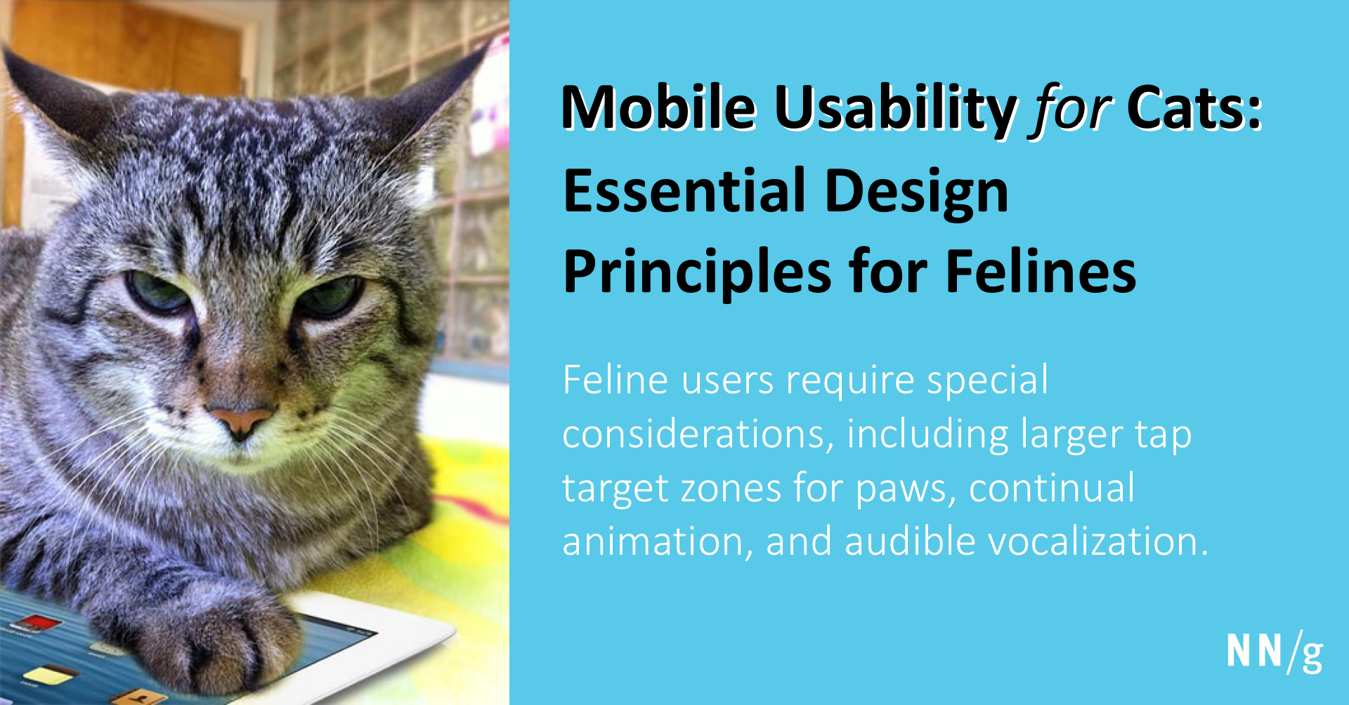 Mobile Usability for Cats: Essential Design Principles for Felines