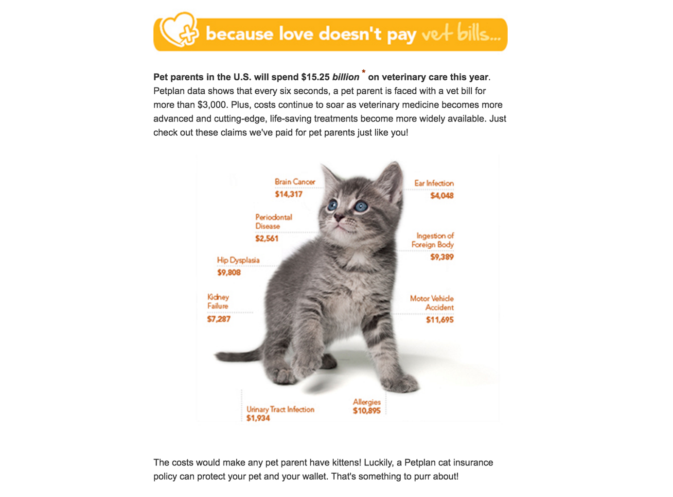 Screenshot of pet insurance web page listing possible health expenses