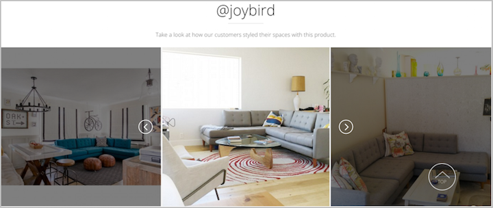 Joybird Social photos