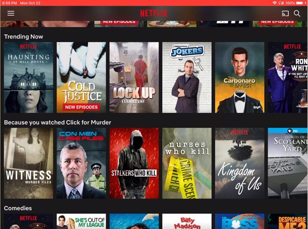 Netflix主页