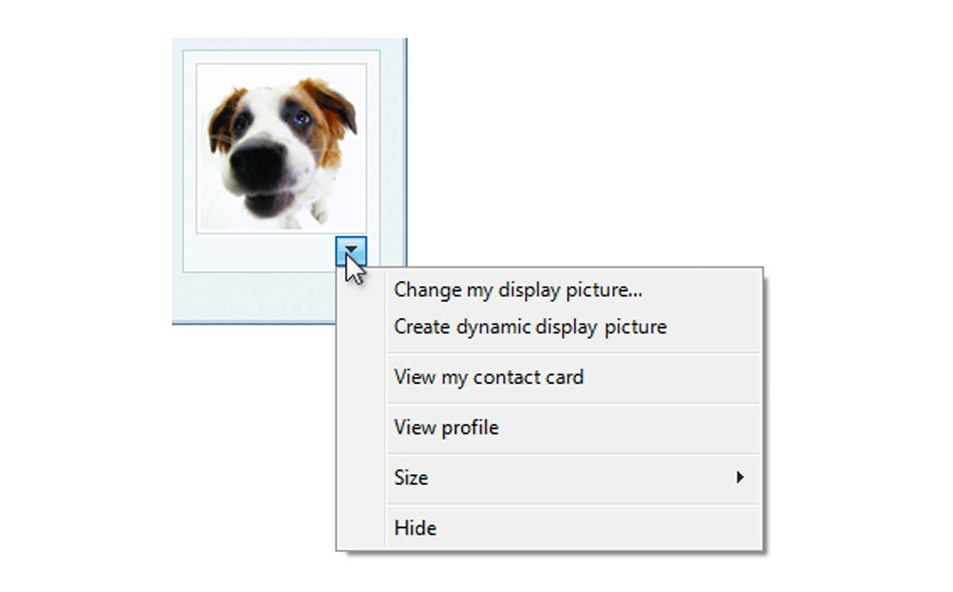 Windows Contextual Menu