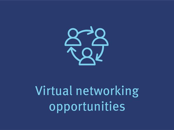 虚拟网络的机会